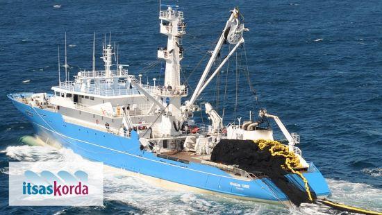 Ecodiseño de cuerdas biodegradables para el sector atunero