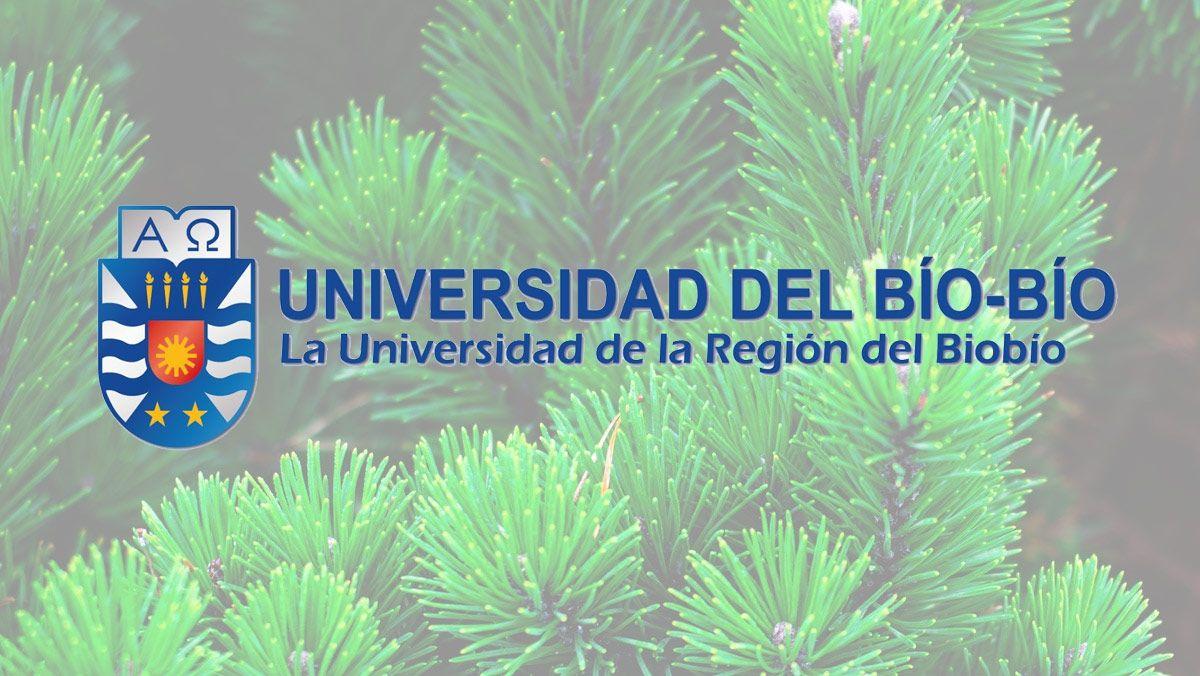 Ik ingeniería colabora con la universidad del Bío-Bío de Chile
