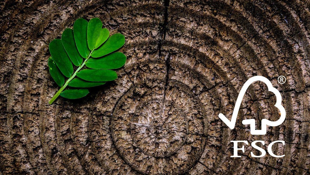 Ponencia sobre compra y contratación Pública Verde en el sector forestal
